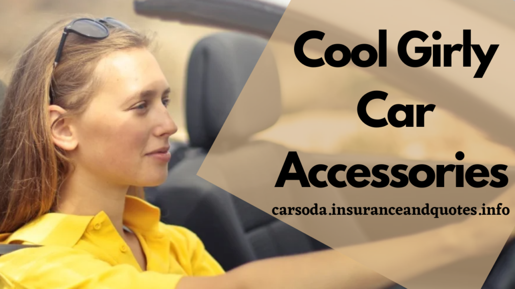 Cool Girly Car Accessories